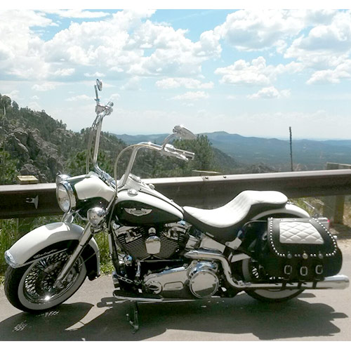 H-D Chief Saddlebags Black Leather - White Diamond Stitched Insert - $825